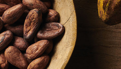 Peter's Chocolate - Sustainability